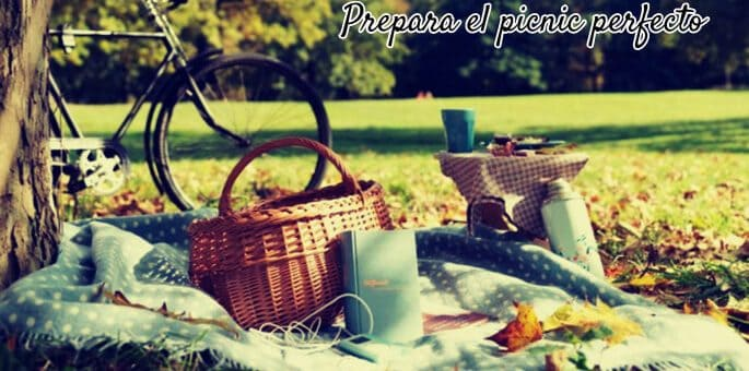 picnic ideal